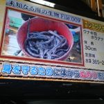 未知なる深海魚を捕獲せよ!深海生物がヤバすぎる((((;゜Д゜)))