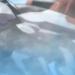 【ネタバレ】機動戦士ガンダム 鉄血のオルフェンズ 第36話 「穢れた翼」【アニメ感想】