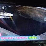 博多駅前の陥没は現在進行形で拡大中!巨大穴に飲み込まれ広範囲で停電!ガス漏れも!
