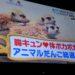 【めざましテレビ】胸キュン!体ポカポカ!アニマルだんご総選挙!