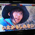 【秘境ガラパゴス】未知なるピンクイグアナに新事実!夏菜世紀の大発見!!