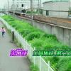 【ネタバレ】仮面ライダーエグゼイド 第5話「全員集結、激突Crash!」【ドラマ感想】