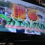 【イッテQ】お祭り男宮川大輔!カエル祭りinアメリカがヤバすぎる((((;゜Д゜)))w