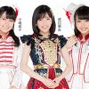 【悲報】AKB48のCD585枚…ダンボール11箱分を山に投棄した男が書類送検!