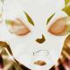 【ネタバレ】ドラゴンボール超 第125話 「威風堂々!破壊神トッポ降臨!!」【アニメ感想】
