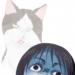 【注意】猫カフェMOCHA立川店で猫パルボウイルス蔓延!猫4匹死亡と内部告発