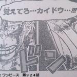 【ワンピース924話】キッドとルフィが共闘!!カイドウに勝てるのか!?