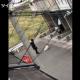 【動物虐待】犬を蹴り飛ばすマジキチおばさんが大炎上!!