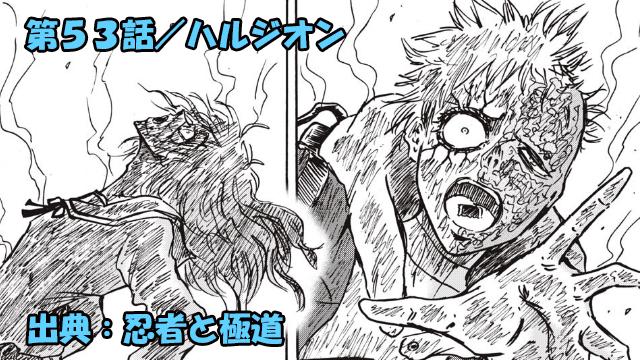 忍者と極道 ネタバレ感想 53話/毒と天使の壮絶な過去!!